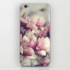 Sugar Magnolia iPhone & iPod Skin