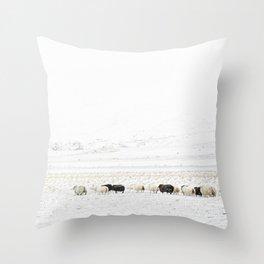Icelandic Sheep VI Throw Pillow