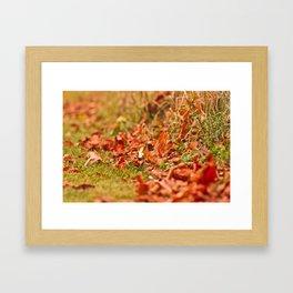 Autumn time Framed Art Print