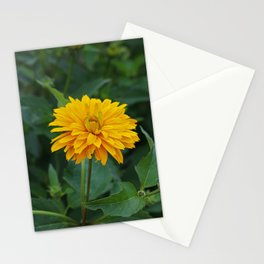 Peaceful Way Stationery Cards
