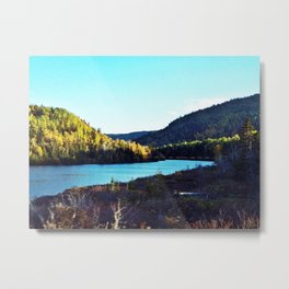 River to Wilderness Metal Print