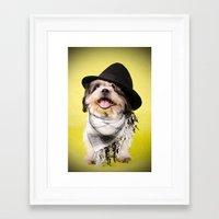 shih tzu Framed Art Prints featuring Shih Tzu by Jessica Glonek