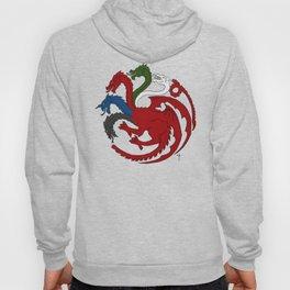 Fantastic Heraldry: Chromatic Dragon Hoody