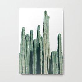 Cactus Line Metal Print