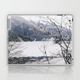 Three Valley Gap Laptop & iPad Skin