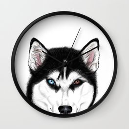 Husky different eyes Wall Clock