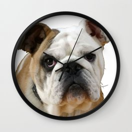 American Bulldog Background Removed Wall Clock