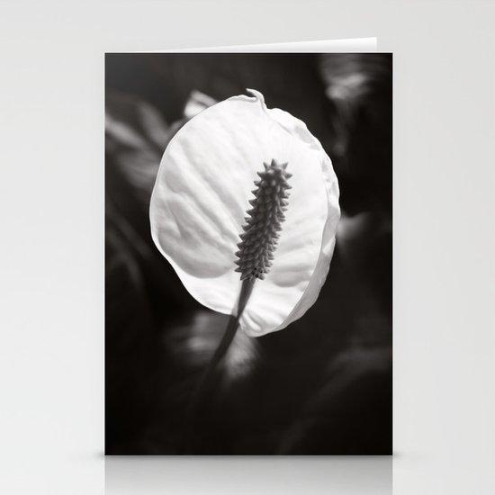Secret Garden ~ No.2 Stationery Cards
