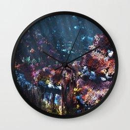 Symbiota Wall Clock
