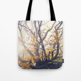 Dreamy yellow forest Tote Bag