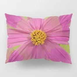 Endless Pink Cosmos Pillow Sham