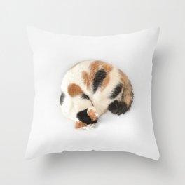 Sleeping Calico Cat Throw Pillow