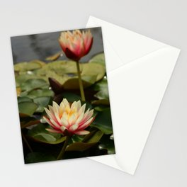 Waterlily Pond Stationery Cards