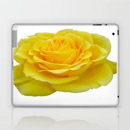 Beautiful Yellow Rose Closeup Isolated on White Laptop & iPad Skin