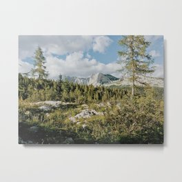 Afternoon in the mountains Metal Print