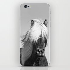 Portrait of a Horse in Scotish Highlands iPhone & iPod Skin