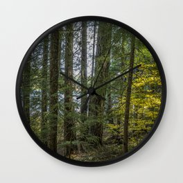 The Woods Around Clear Lake Wall Clock