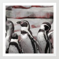 penguins Art Prints featuring penguins by MehrFarbeimLeben