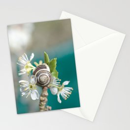 sea snail Stationery Cards