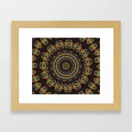 Peacock Velvet Framed Art Print