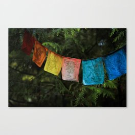 Synthetic Rainbow Canvas Print