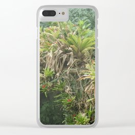 Top of the canopy Clear iPhone Case