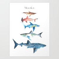 sharks Art Prints featuring Sharks by Amee Cherie Piek