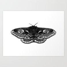 Moth Dotwork Drawing Art Print