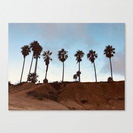 San Diego Palms Trees Canvas Print