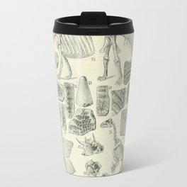 Fossil Chart Travel Mug