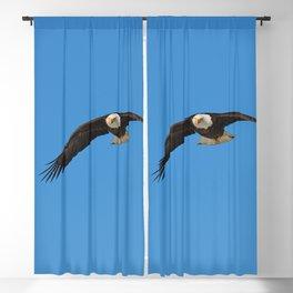 Eagle In Flight - Alaska Blackout Curtain