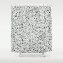 Hornfels 01 - Texture Shower Curtain