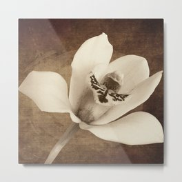 Vintage Flowers Digital Collage 12 Metal Print