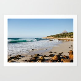 Lion's Head Meets the Swell Art Print