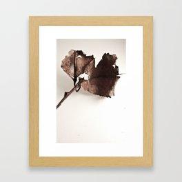 Aged Framed Art Print