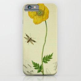 Flower Yellow Poppy meconopsis cambrica18 iPhone Case