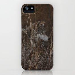 Cana in Fall Foliage iPhone Case
