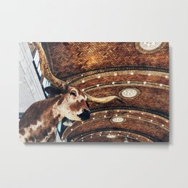 Longhorn at the West Side Market Metal Print