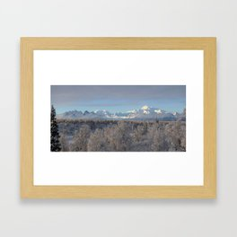 Denali North View Framed Art Print
