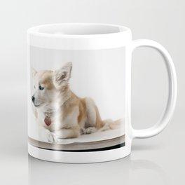 THE WINTER SESSIONS 2017 Coffee Mug