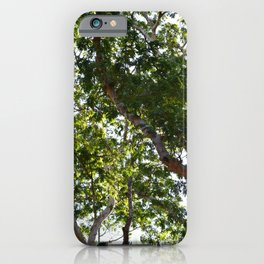 Photo 66 Tropical Trees iPhone Case