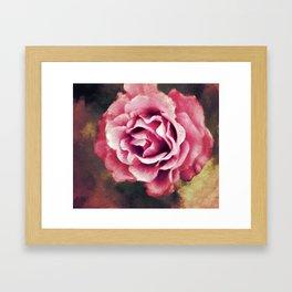 Autumn Rose Framed Art Print