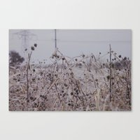 clear Canvas Prints featuring Clear by Ashley Gongora