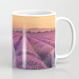 I - Sunrise over blooming fields of lavender in the Provence, France Coffee Mug