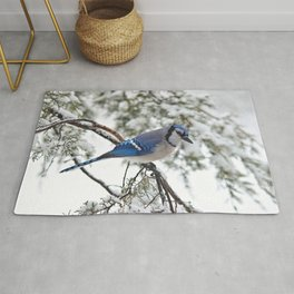 Beautiful Blue Jay Rug