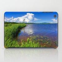 beaver iPad Cases featuring Beaver Brook by Nicolas Raymond