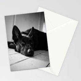 Dog German Shepherd  Stationery Cards