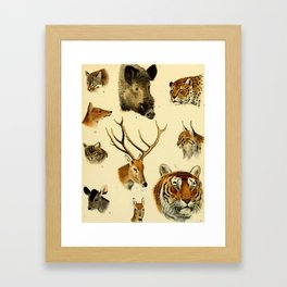 The Great and Small Game of Europe, Western and Northern Asia and America Framed Art Print