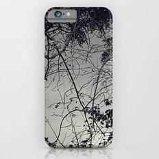 Untitle II iPhone 6 Slim Case