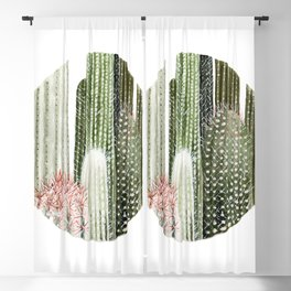 Circular Cacti Blackout Curtain
